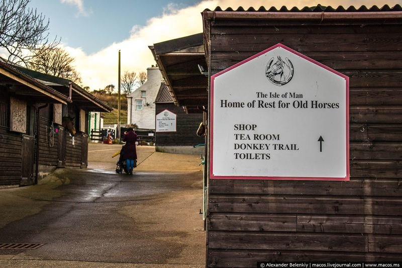 Остров мэн дом престарелых дом престарелых ставропольская